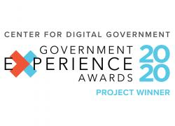 Government Experience award graphic